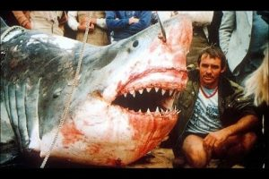 Here Are 11 Of The BIGGEST Sharks Ever Caught By Fishermen