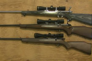 Here Are The 3 Types Of Rifles That Every Gun Owner/ Hunter Should Own